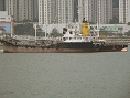 GOLDEN DRAGON 268 IMO8910835