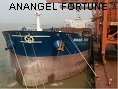 ANANGEL FORTUNE IMO9329459