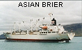 ASIAN BRIER  IMO9172703