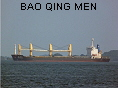 BAO QING MEN IMO8300925