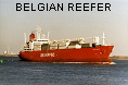 BELGIAN REEFER IMO8300365