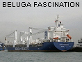 BELUGA FASCINATION IMO9358022