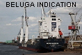 BELUGA INDICATION IMO9214563