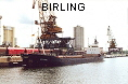 BIRLING IMO7628435
