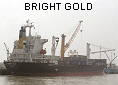 BRIGHT GOLD IMO9154830