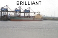 BRILLIANT IMO7401734