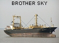 BROTHER SKY IMO9153331