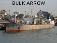 BULK ARROW IMO6916201