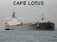 CAPE LOTUS IMO9201695