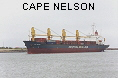CAPE NELSON IMO8124931