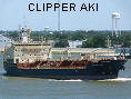 CLIPPER AKI IMO9505974
