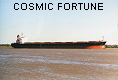 COSMIC FORTUNE IMO9156589