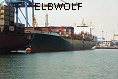 ELBWOLF  IMO9185401