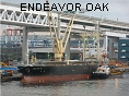 ENDEAVOR OAK IMO9240043