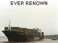 EVER RENOWN IMO9055474