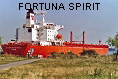 FORTUNA SPIRIT IMO8022509