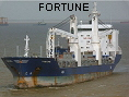 FORTUNE IMO9402067