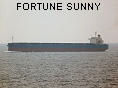 FORTUNE SUNNY IMO9317523