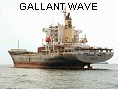 GALLANT WAVE IMO9120920