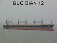 GUO DIAN 12 IMO9145968
