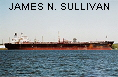 JAMES N. SULLIVAN IMO9009358