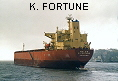 K. FORTUNE IMO9100085
