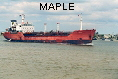 MAPLE IMO7427142