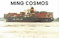 MING COSMOS IMO9198288