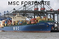MSC FORTUNATE IMO9112272