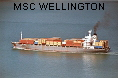 MSC WELLINGTON IMO7910905
