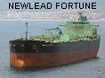 NEWLEAD FORTUNE IMO9269257