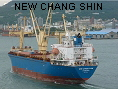 NEW CHANG SHIN IMO9345568