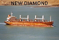 NEW DIAMOND IMO9117868