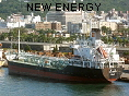 NEW ENERGY IMO9060613
