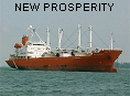 NEW PROSPERITY IMO9172442