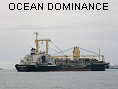 OCEAN DOMINANCE IMO9354557