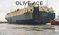 OLIVE ACE IMO7628174