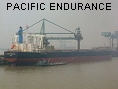 PACIFIC ENDURANCE IMO9573775