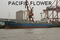 PACIFIC FLOWER IMO9170913