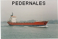 PEDERNALES IMO7634044