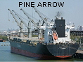 PINE ARROW IMO9107306