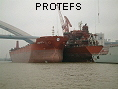 PROTEFS IMO9286633