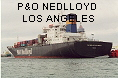 P&O NEDLLOYD LOS ANGELES IMO7811484