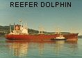 REEFER DOLPHIN IMO8217104