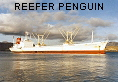 REEFER PENGUIN IMO8209078