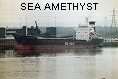 SEA AMETHYST IMO8520824