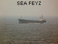 SEA FEYZ IMO8101537