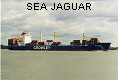 SEA JAGUAR IMO9128087