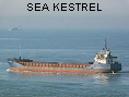 SEA KESTREL IMO9006459