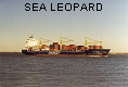 SEA LEOPARD IMO9150195